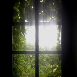 The Window of Harmony
