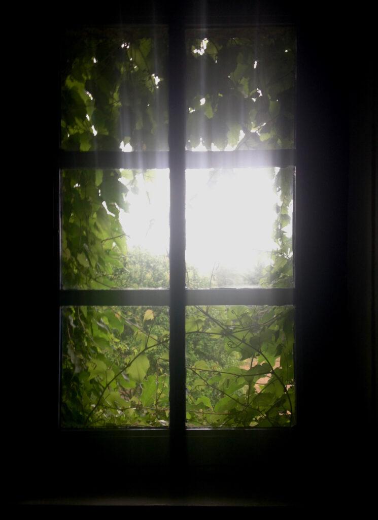 Window of Harmony